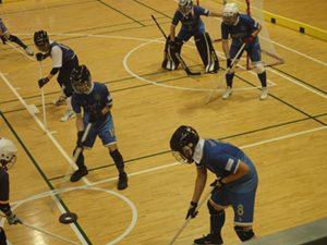 ゴールキーパーを含めて1チーム6名のプレイヤーで競技を行う