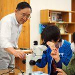 顕微鏡でプランクトンを観察