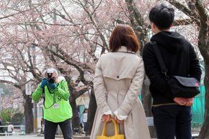 桜のトンネルで地元の皆さんを撮影